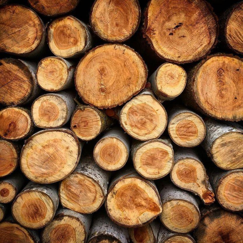 Woodchuck. http://ift.tt/2dMmin2