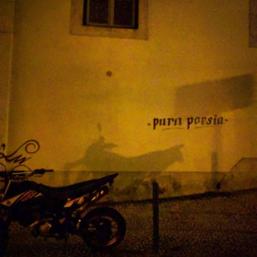A mota. http://ift.tt/2nKaVBy