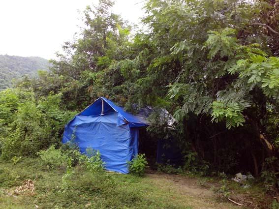 Dựng lều trong rừng sâu