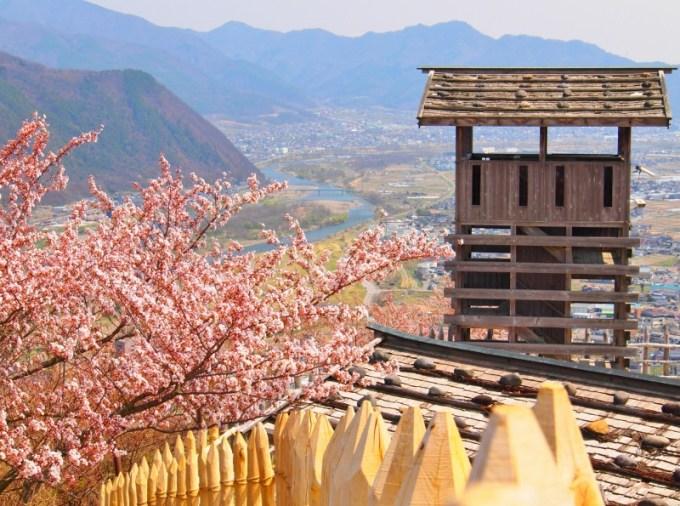 長野県千曲市桜の名所城山史蹟公園荒砥城