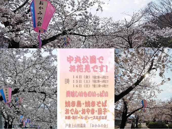 千曲市戸倉上山田温泉桜お花見おかみの会