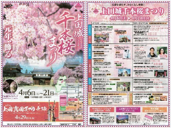 第16回上田城千本桜まつり桜開花情報