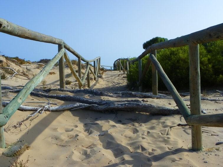 Ruta costera entre Santa Pola y El Pinet: Parque Natural de las Salinas de Santa Pola