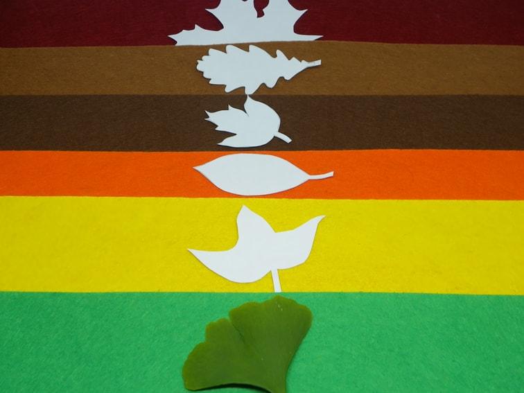 fieltro de colores calidos y plantillas de hojas caducas