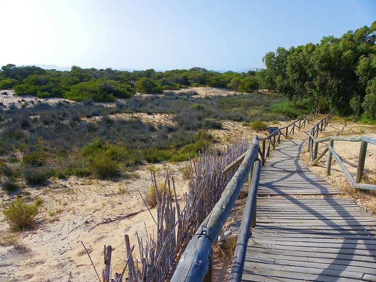 en lo alto de una duna por un sendero en el parque natural de las salinas de santa pola