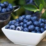Frozen Blueberries 500 Bag