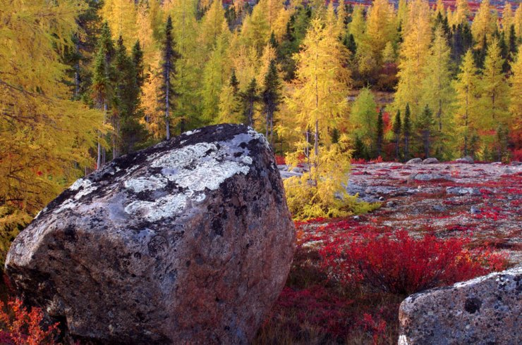Fall colours at Schmok Lake. Dennis Fast photo.