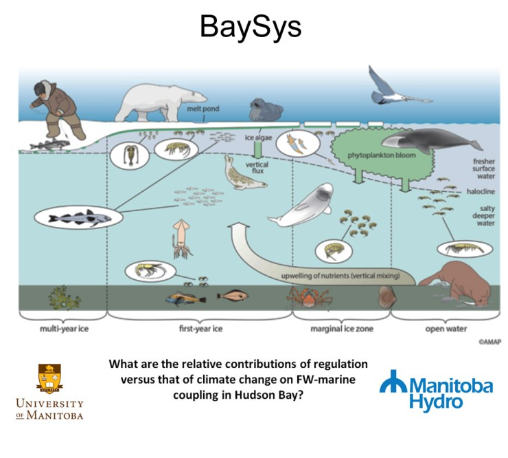 Interactions between the climate, marine and freshwater systems of Hudson Bay.