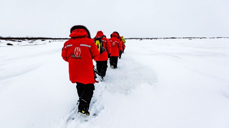 Walking out to view polar bears at Nanuk Polar Bear Lodge.