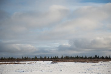 landscape-churchill-wild-nanuk-polar-bear-lodge