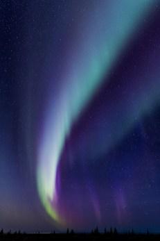 aurora-borealis-nanuk-polar-bear-lodge-charles-glatzer