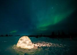 iglu-nanuk-polar-bear-lodge-jad-davenport - Copy