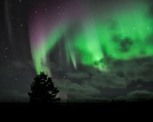 Northern lights at Nanuk Polar Bear Lodge. Albert Saunders photo.