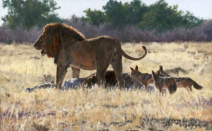 Feast. Original oil painting by Linda Besse. When the King of the Beasts feeds, it is a feast for many.