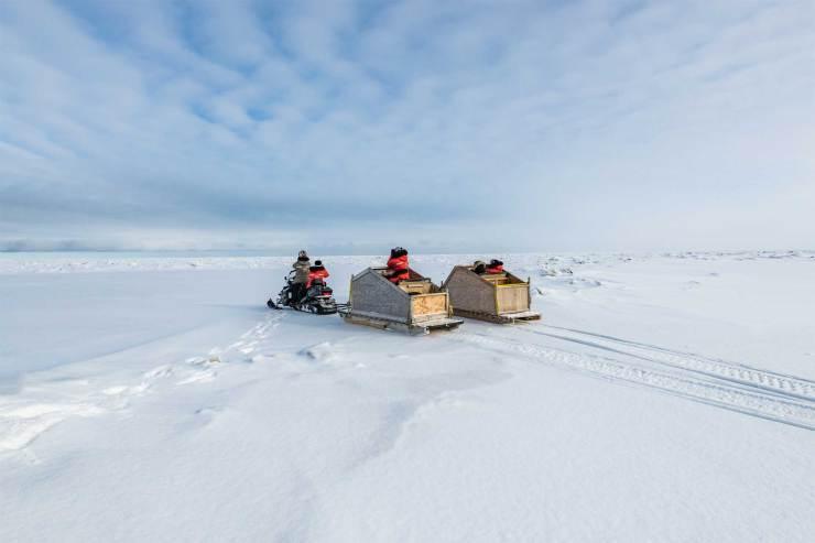 Next stop, North Pole. Gillian Lloyd photo.