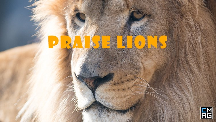 JubileeYear Introduces New Worship Cats: Praise Lions