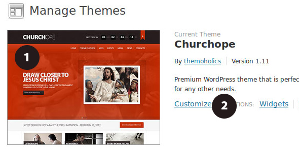 theme_customizer_1