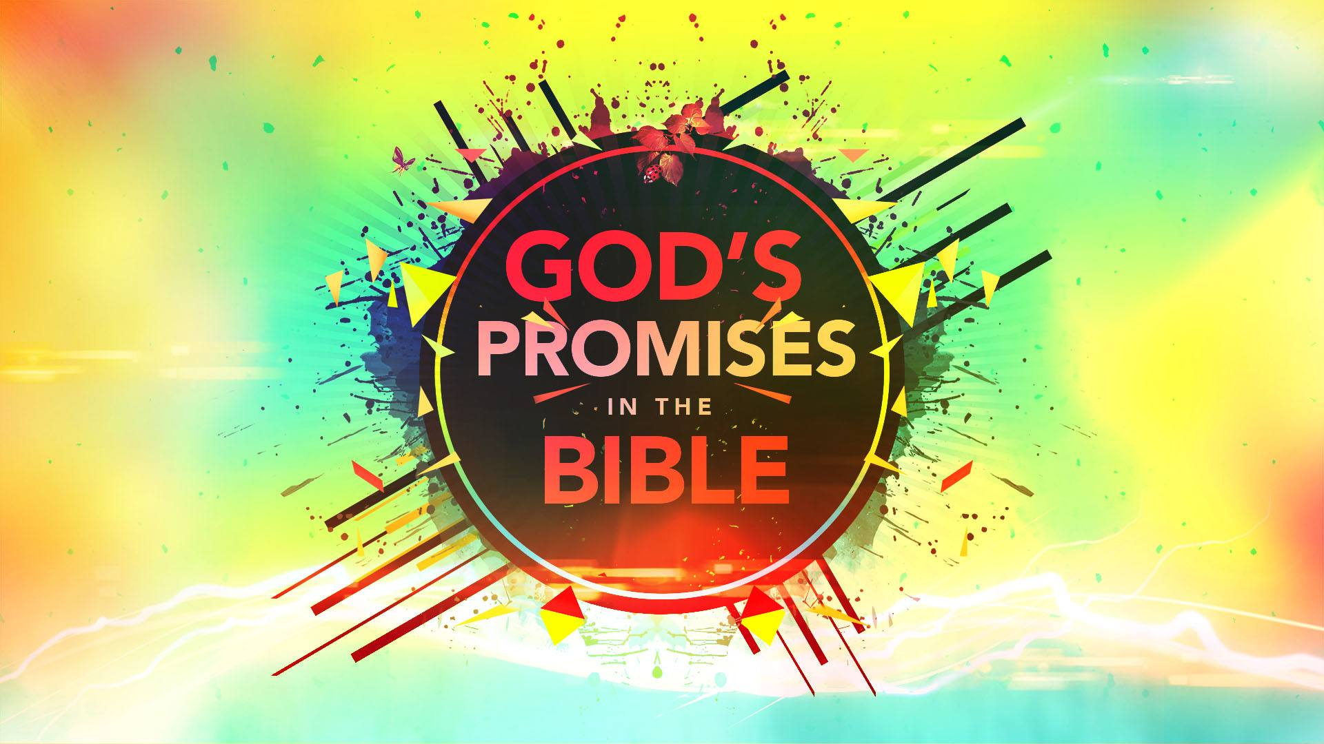The Promises of God In The Bible