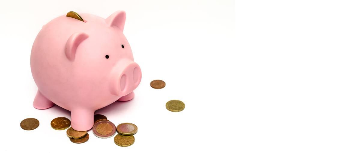 Money Paid - Church Worker Salary
