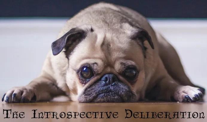 The Introspective Deliberation