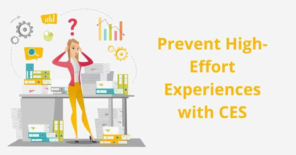 customer success software customer experience score
