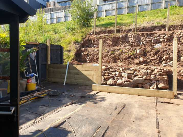 Paignton Back Garden Update 2