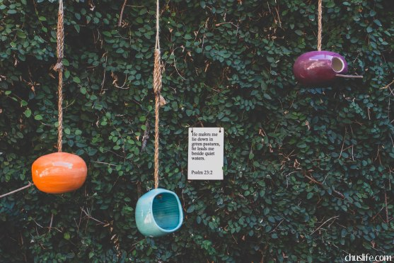 Fig Curated Goods