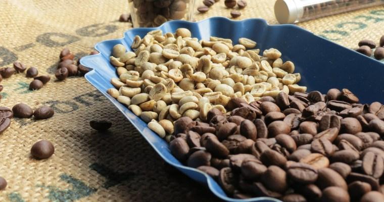 Zázrak menom zelená káva – piť či nepiť?