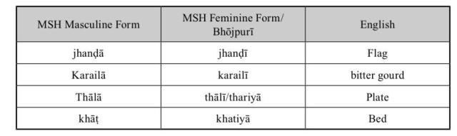 MSH all nouns