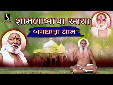 ShamlaBapa Aaya.. MohanBapa Ne Laya.. Aavya Bagdana Dham Aavya || SITARAM SITARAM ||