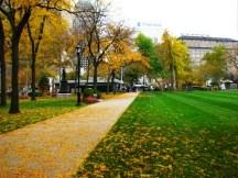 một góc của công viên