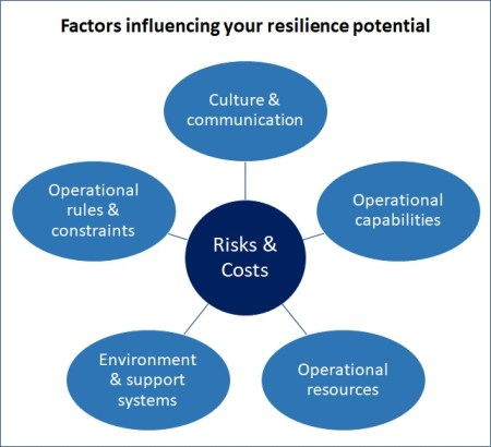 Factors influencing resilience potential