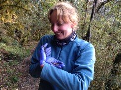Me cradling 2 beautiful Hynobius salamanders that I found in the Hehuan mountains. These were much easier to find as they were curled up under rocks and crevices and don't move very fast; the complete opposite to frogs!