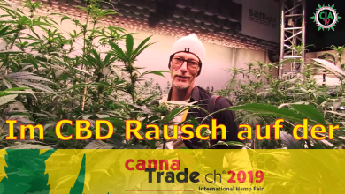 Photo of Im CBD Rausch auf der Cannatrade 2019 (Zürich) – mit GreenConnection (GreenGermany)