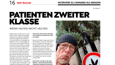 Photo of SoftSecrets: Interview zu Cannabis als Medizin