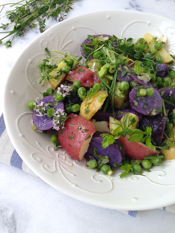 Italian Potato Salad Recipe with Heirloom Potatoes, Herbs and Olive Oil Dressing!