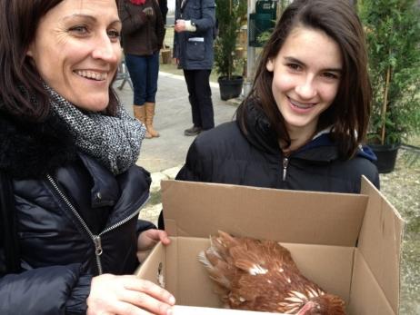 300 galline sono state adottate con 150 famiglie della Comunità dei Comuni del Canton Podensac. France Bleu immagini