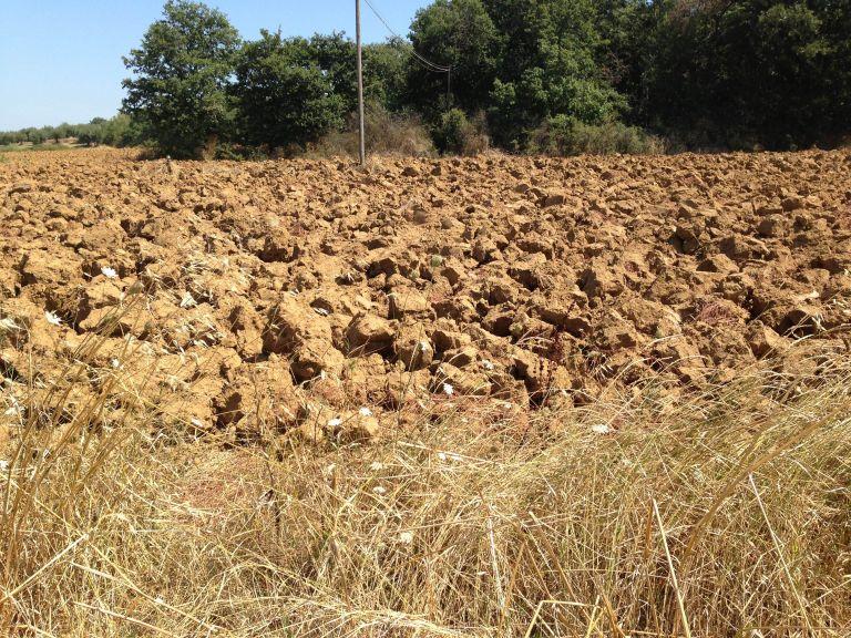 Terreno Arato a Mirabello di Panicale