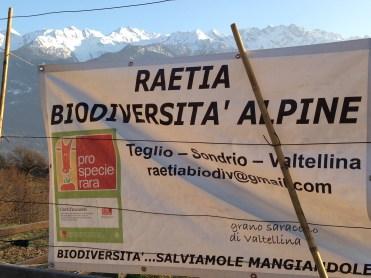 Raetia Biodiversita Alpine
