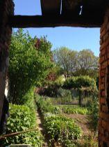 Turconi - Vista orto