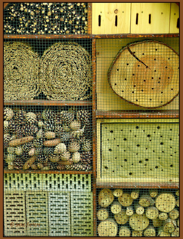24 insect hotel