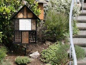 51 bug house