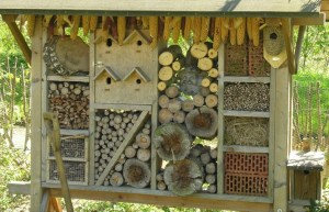 58 Insect Hotel