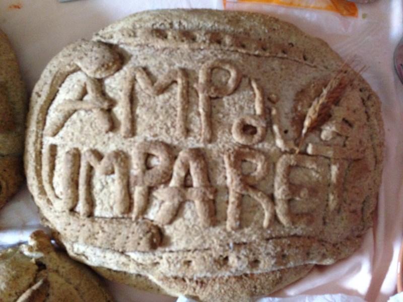 Magna Carta - Campdigrano