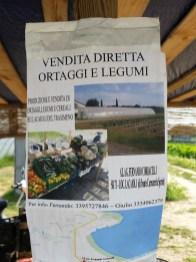 Fernando Corbacelli - Vendita Diretta