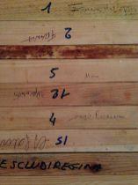 Top Bar - Struttura La Parte Superiore con la Presa dei Telai e Escludi Regina