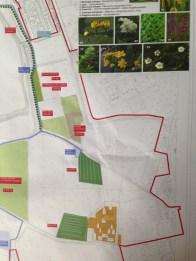 Parco delle Cave - Mappa Girasoli