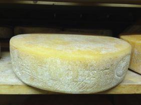 Azienda Agricola Prestello - Silter Forma Gialla