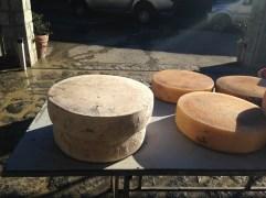 Azienda Agricola Prestello - Silter Lavaggio delle Forme