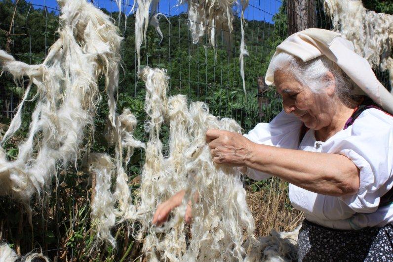 Asciugatura della lana